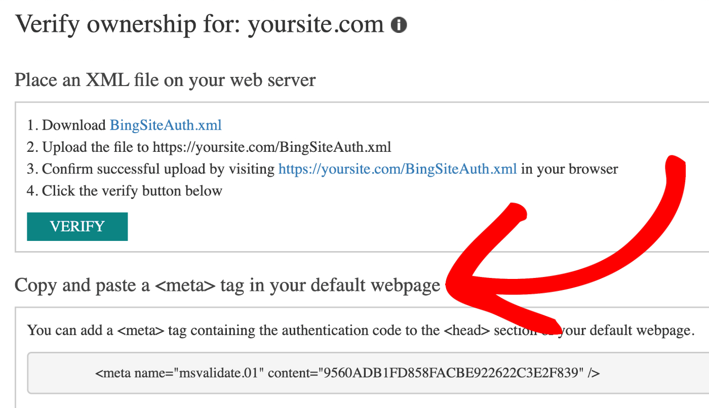The meta tag section on the Verify ownership screen