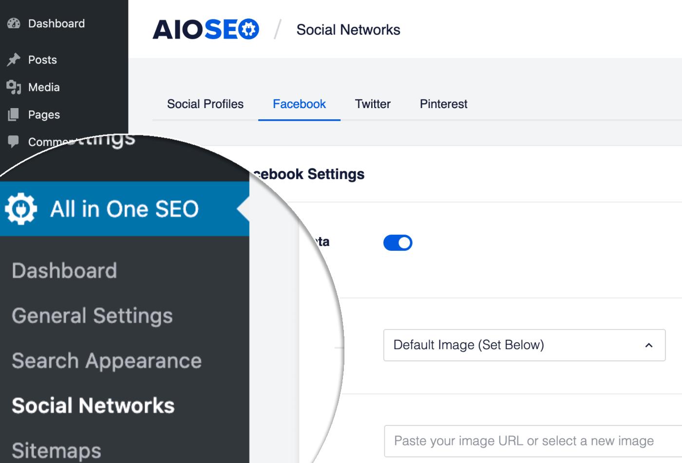 Social Networks menu item in All in One SEO