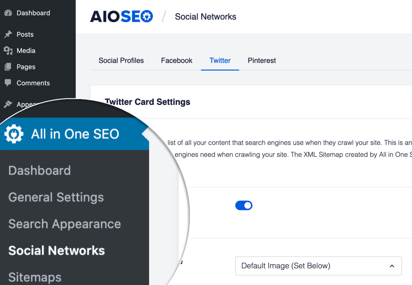 Social Networks menu item in the All in One SEO menu