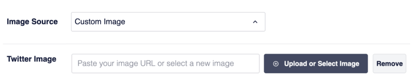 Setting the Image Source and Twitter Image