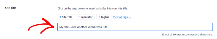 Entering the SEO title in All in One SEO