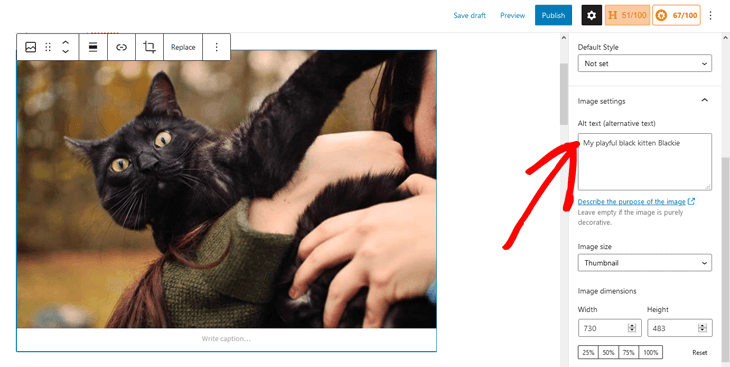 Adding image alt text in WordPress block editor