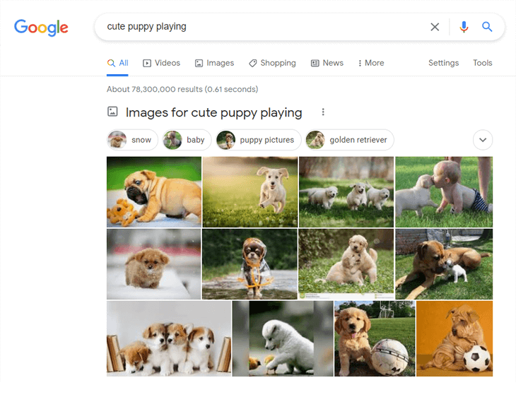 Example of a Google image search of cute puppy playing