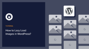 how to Lazy-load image wordpress